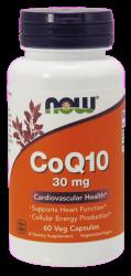 CoQ10-488x1024